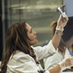 Students studying in a biology science lab