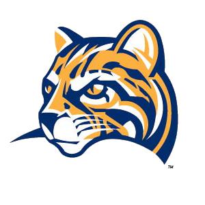 Ocelot mascot logo