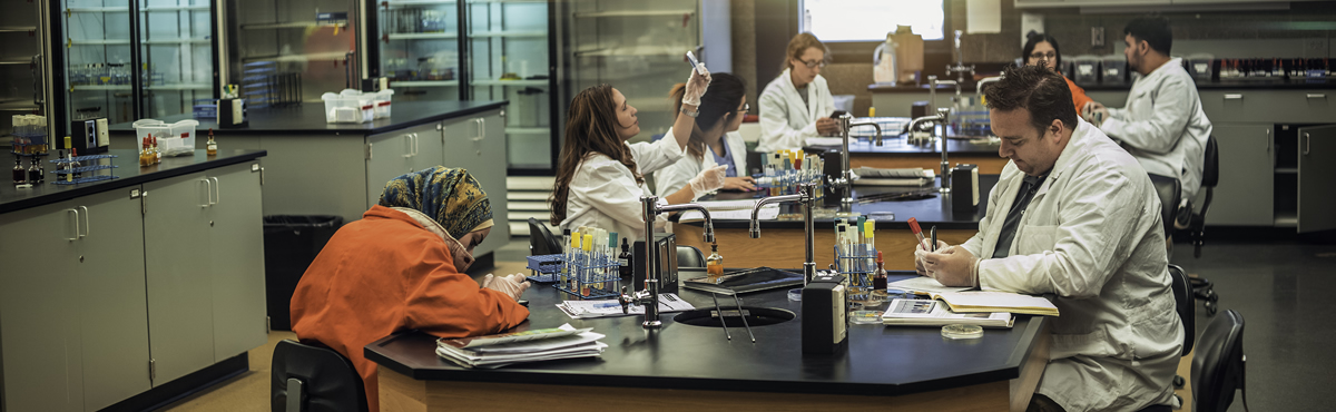 Photo of students studying in a science lab